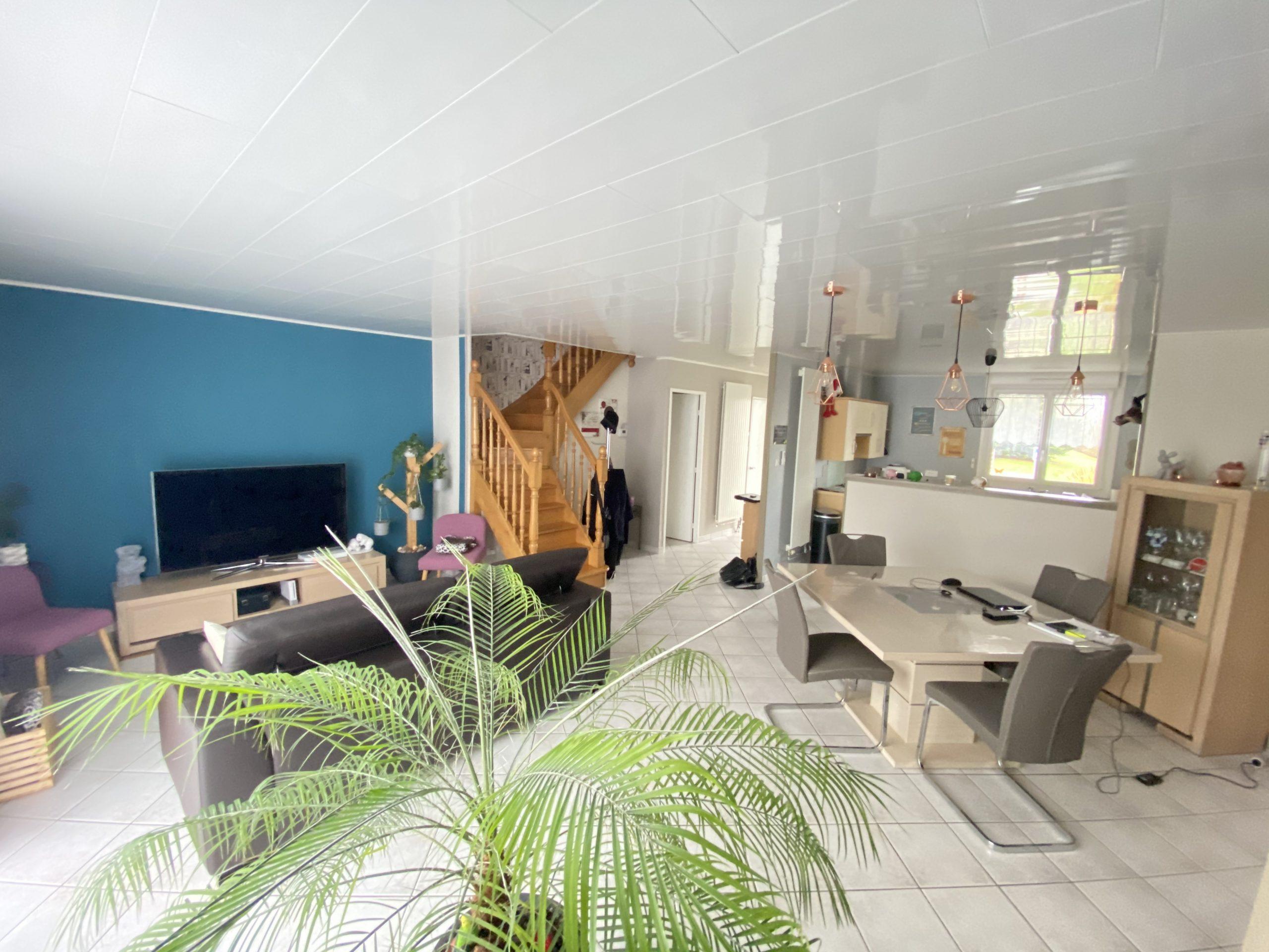 FLÉVILLE DEVANT NANCY : Pavillon individuel de 140 m2 Hab. sur 455 m2 de terrain